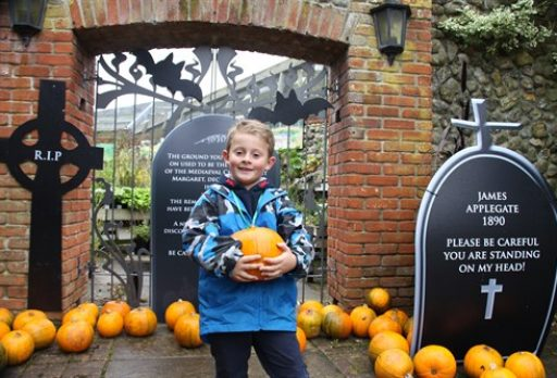 Client News: Halloween Spooktacular at Pensthorpe Natural Park